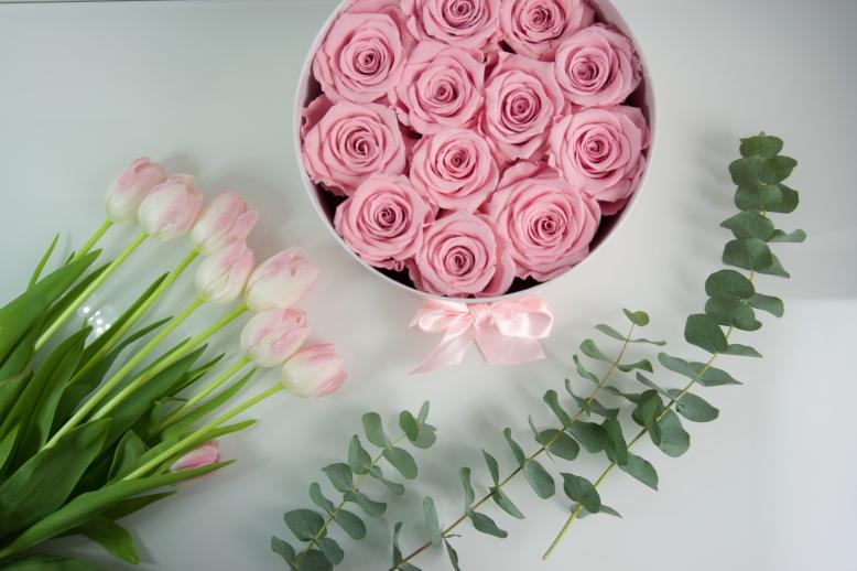 wieczne roze